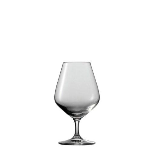 Schott Zwiesel Tritan Bar Special Cognac (43)